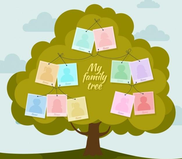 Costruiamo l albero delle nostre origini percorsi per